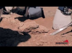 Paleontological expedition in Mongolia